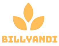 billyandi.com